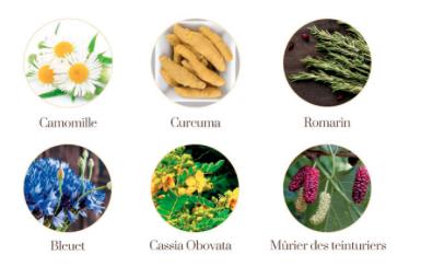 couleur végétale Mimizan
